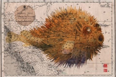 pufferfish-for-S